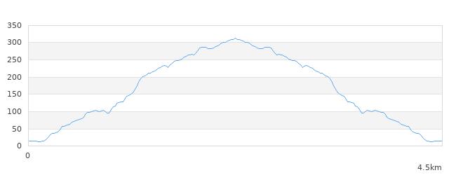 河内飯盛山標高図