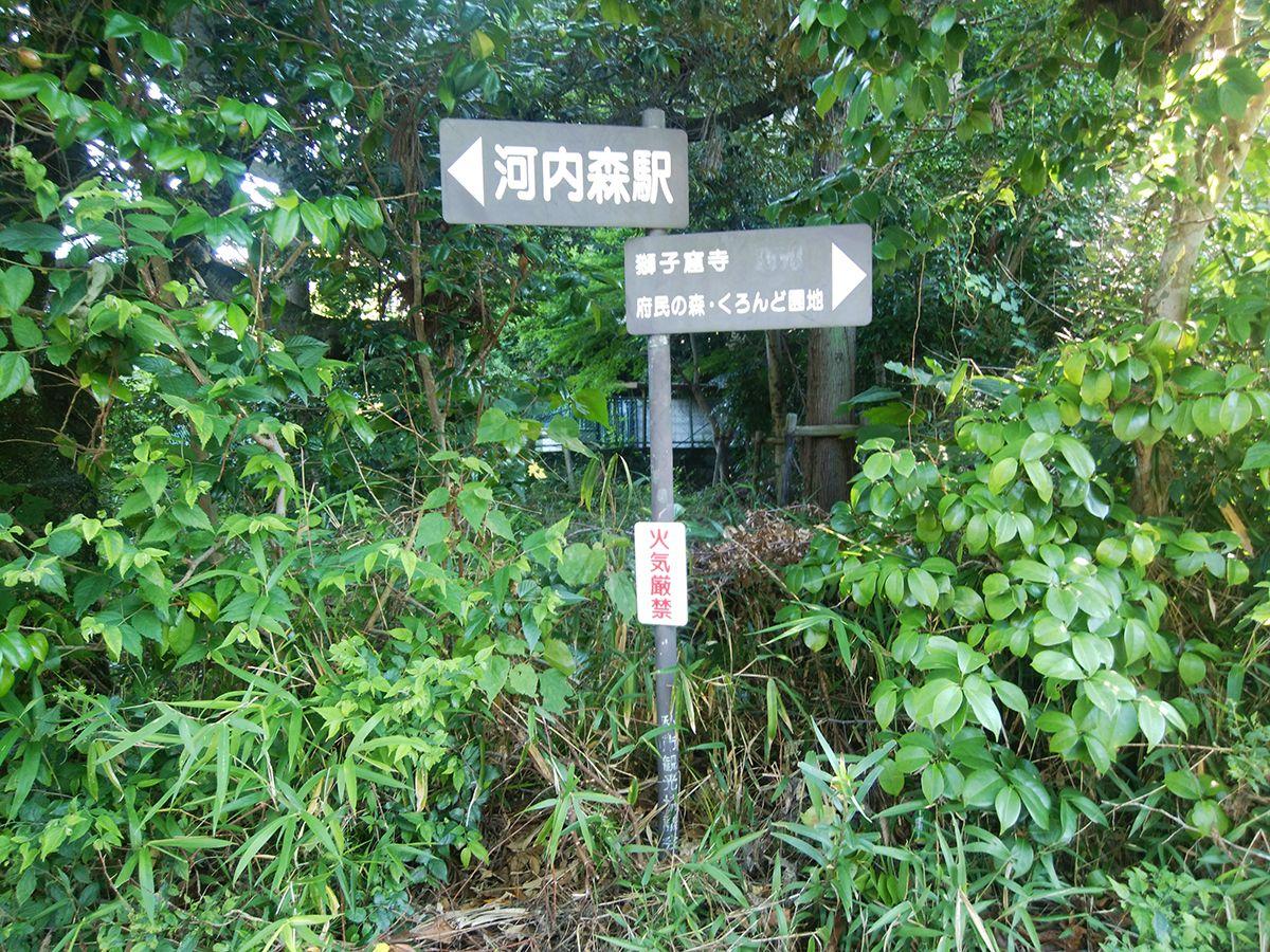 獅子窟寺~くろんど園地~東照山4