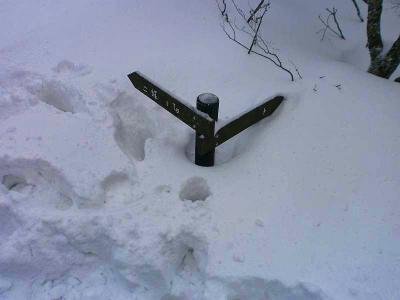 道標が埋まっている。雪が深いけど歩いていてハマりはしなかった