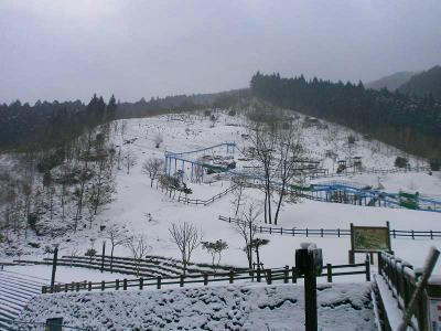 公園だろうけど、ここはスキー場みたいになっているね