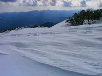 風が彩った雪の形がまた自然の神秘って感じやね