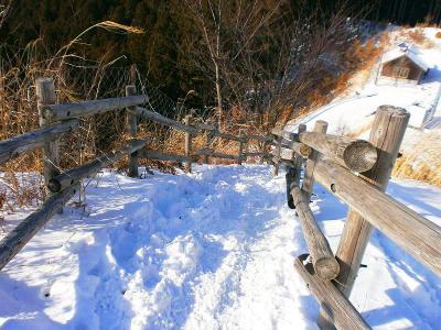 さて、どんどん下っていく。雪はまだまだあるけど周りがとけてきてる気がした