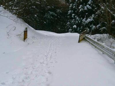 ゲートは開いてるけど林道はまだ終わらない