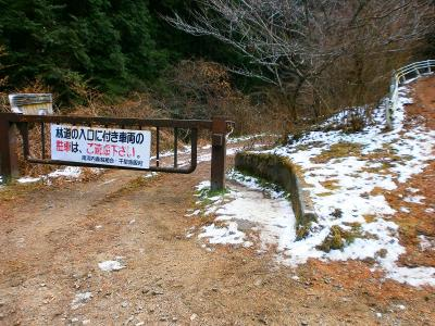 金剛山ロープウェイの手前にあるこの久留野林道入口のゲートから入っていく