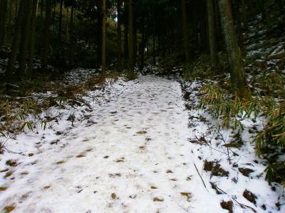 林道はすでに雪が積もっていた。林道なのか滑り易い