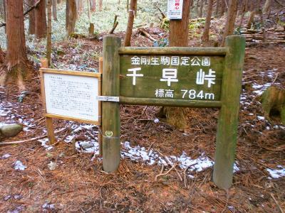 千早峠に到着。このまま北側に向かって池ノ川林道を歩いて金剛山の駐車場へ戻った